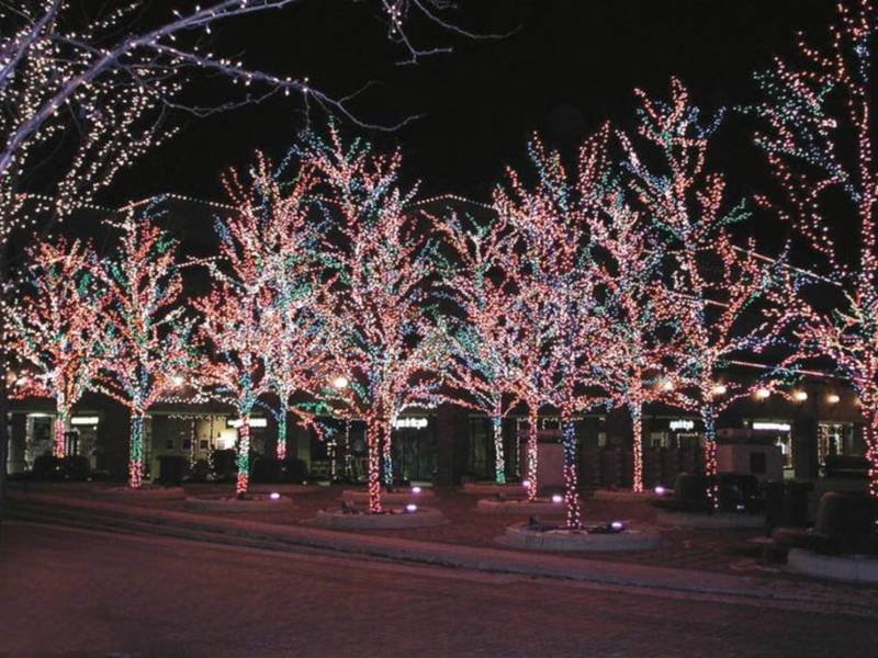 Highland Park Tree Lighting Celebrates Start Of Holiday Season ...