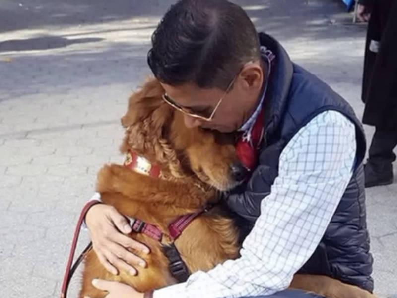 Hugging Dog Of Instagram Gets $10K Donation After Chelsea Fire