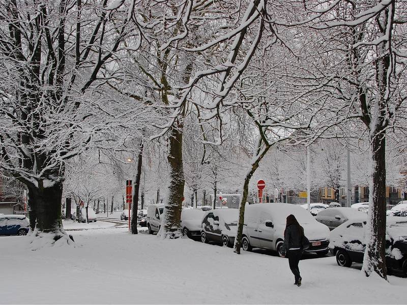 What Is The Weather Like Year Round In Detroit Michigan