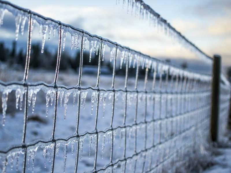Farmer S Almanac More Winter Weather Ahead For Nc
