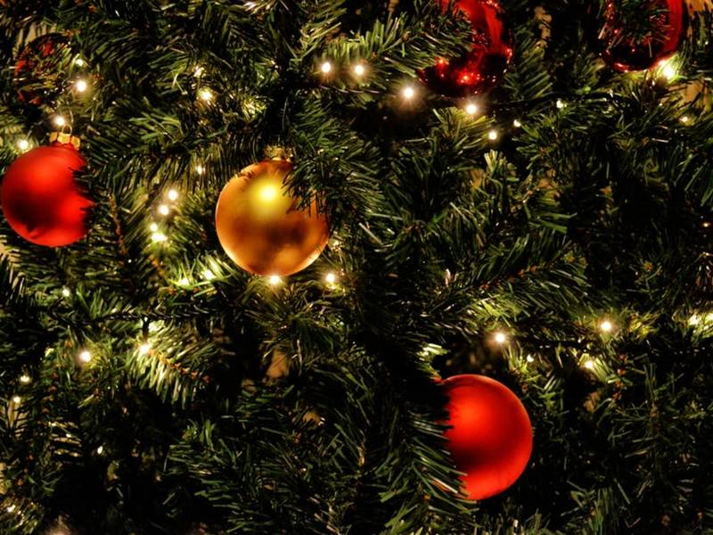where to buy christmas trees in alexandria - Where To Buy Christmas Decorations
