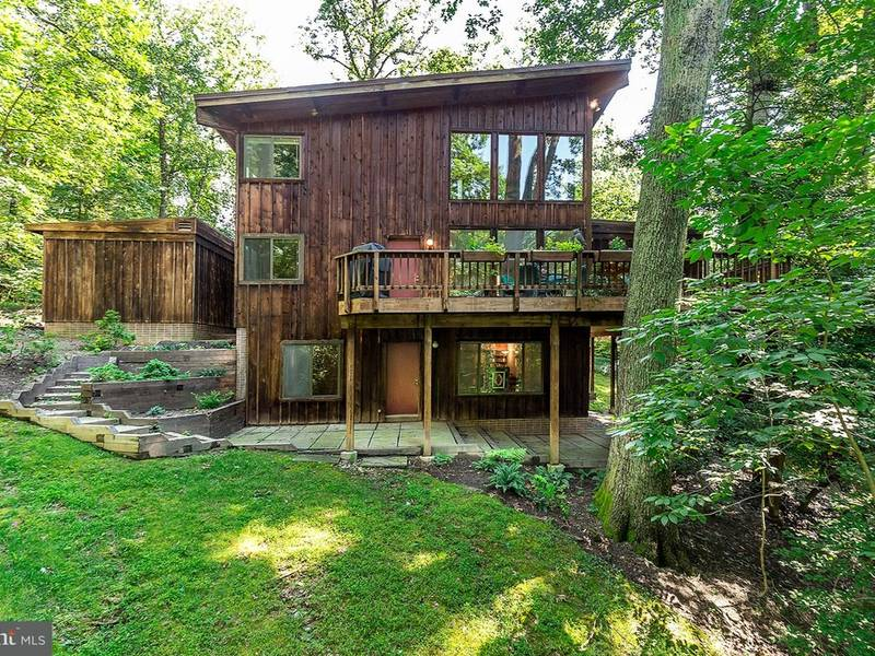Vienna WOW House: $750K Contemporary With Woodsy Feel