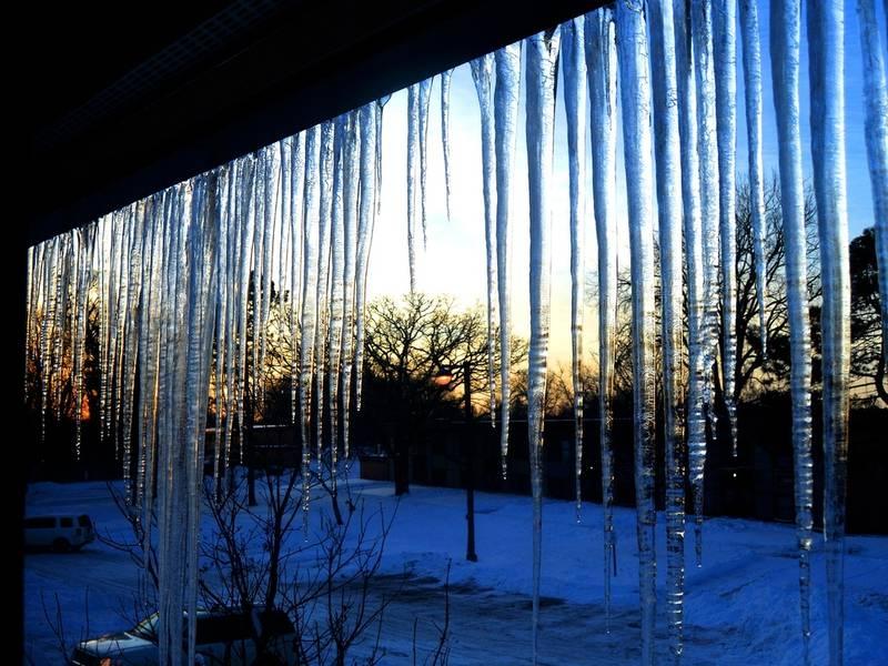 Home City Ice Woodridge Il