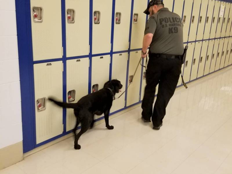 K-9 unit checks locker area of school