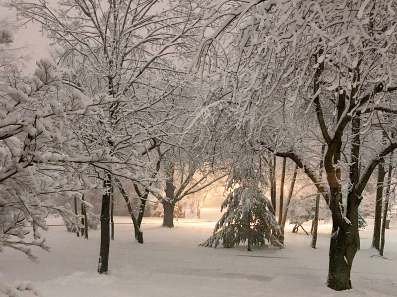 blizzard 2018 photos winter wonderland in illinois. Black Bedroom Furniture Sets. Home Design Ideas