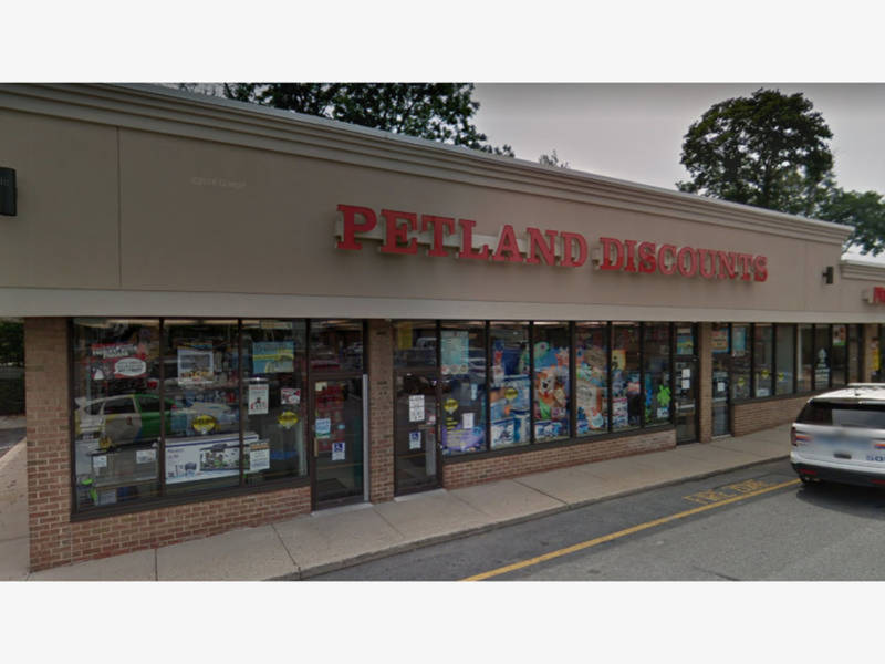 e0ae84d0f05 Petland Discounts To Close Dozens Of NYC Stores
