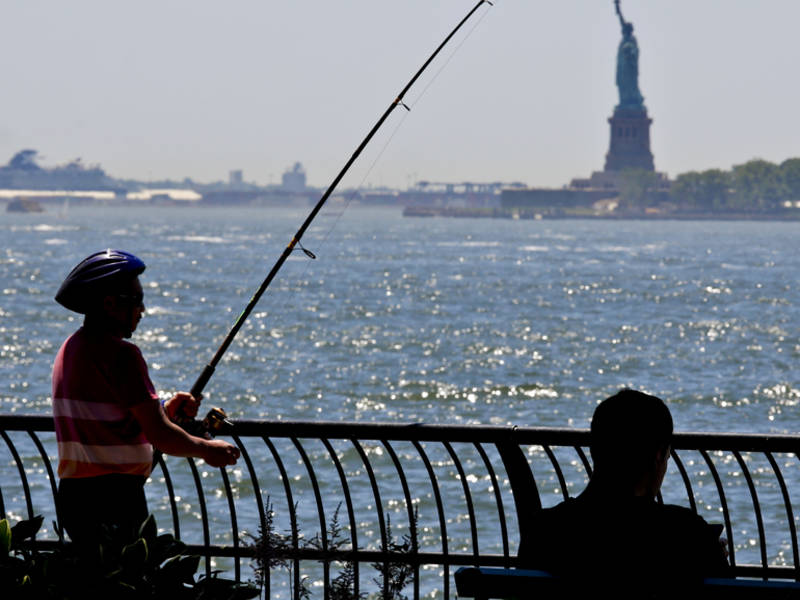 Global Warming Could Make NYC Feel Like Arkansas By 2080: Study