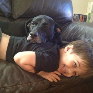 Mia our dog still Missing please help us find her she our baby and our 7 year old son misse his best friend