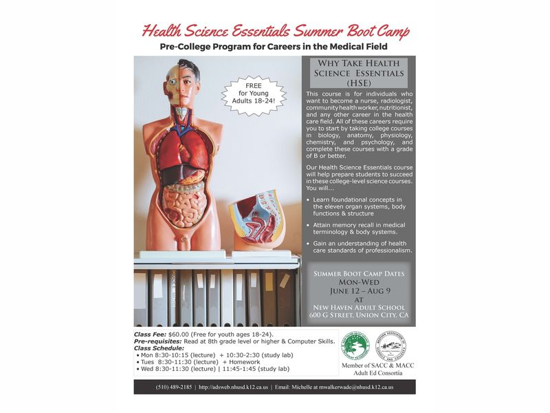 New Haven Adult School Offers Health Science Essentials Summer Boot ...