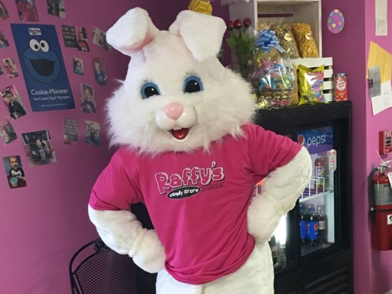 Easter Bunny Coming To New Lenox New Lenox Il Patch