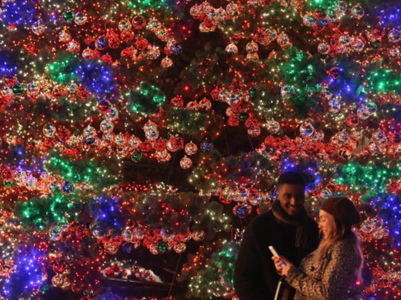 holiday season tree lighting starts at the galleria nov 11