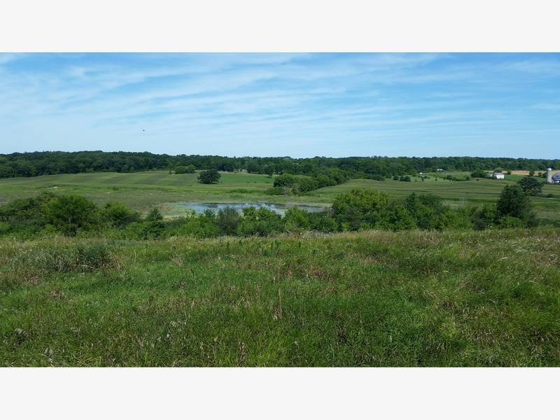 Input Sought On New Forest Preserve Site