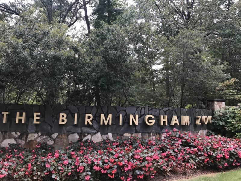 Home And Garden Show Birmingham Al Por 2017