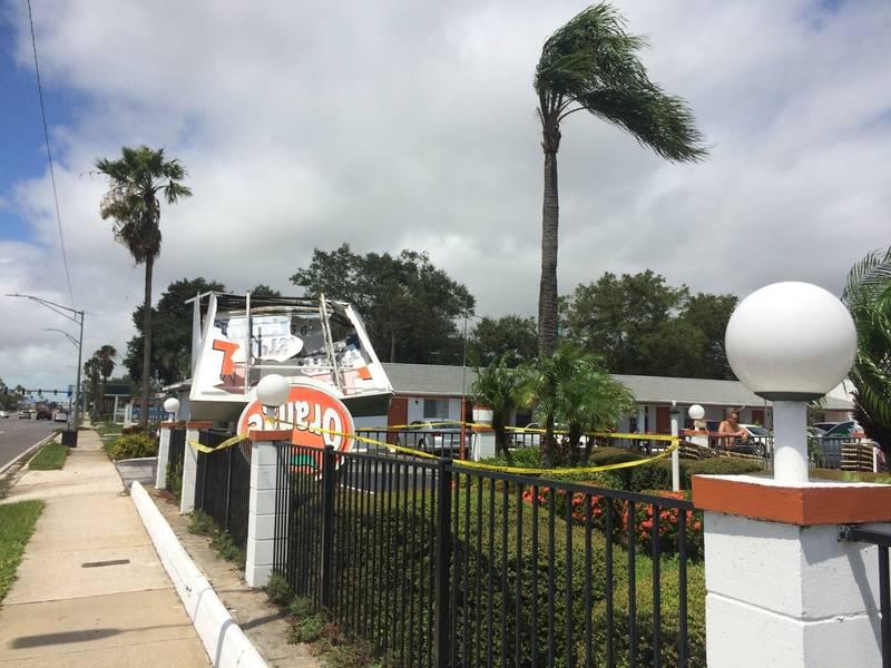 Free Blow Jobs Clearwater Florida - Blowjob - Porn Photos-5811