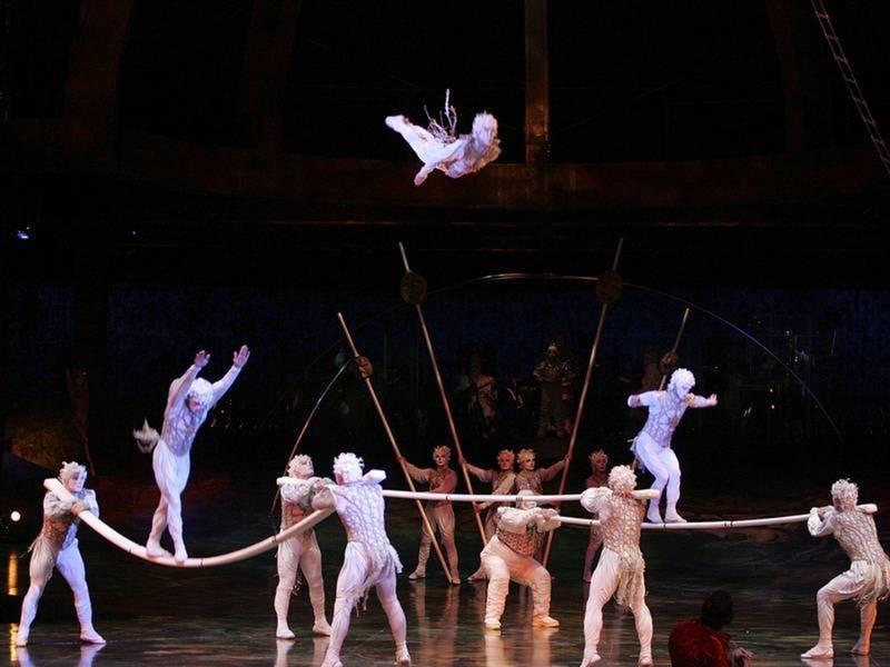 Cirque Du Soleil Aerialist Fell 30 Feet To Stage; Died In Surgery. TAMPA ... & Cirque Du Soleil Aerialist Fell 30 Feet To Stage; Died In Surgery ...