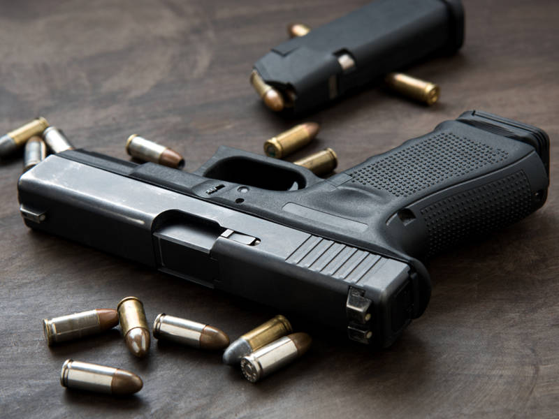 florida failed on gun background checks because of log in problem