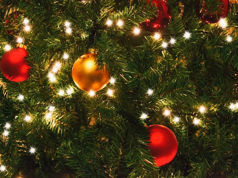 holiday light recycling in lakewood