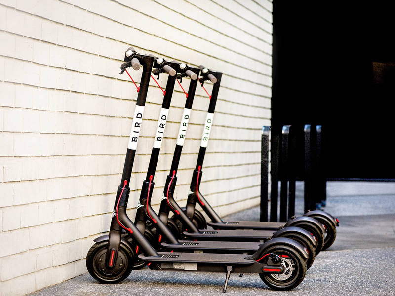 New Scooter Sharing Company Bird Launches In Saint Louis