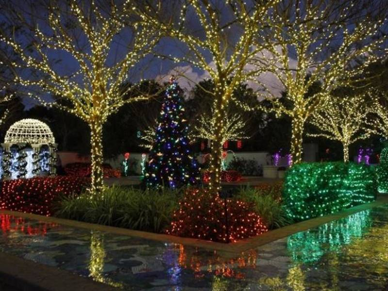 Pinellas to host 18th annual holiday lights in the garden - Largo botanical gardens christmas lights ...