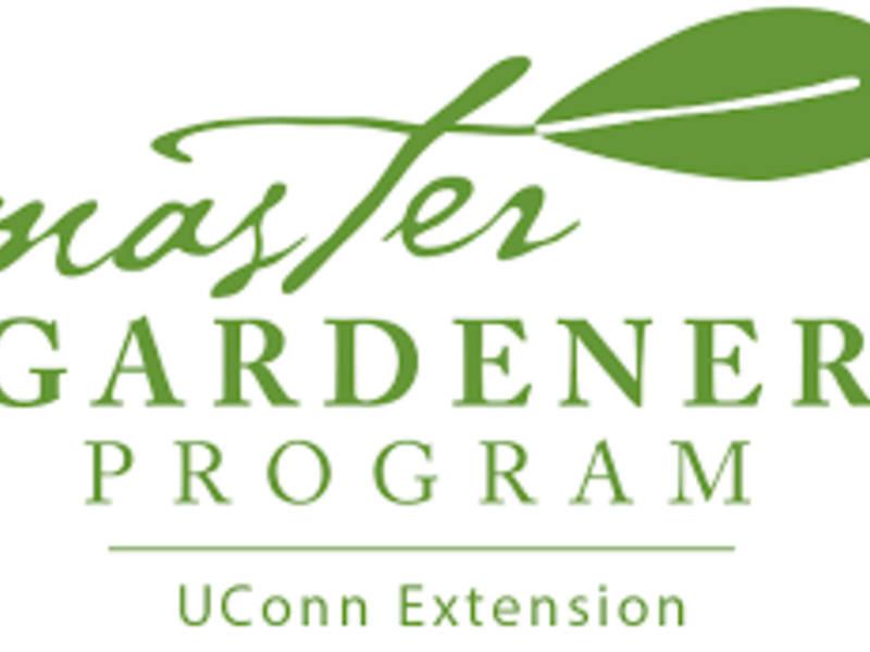 Master Gardener Program Vernon Ct Patch