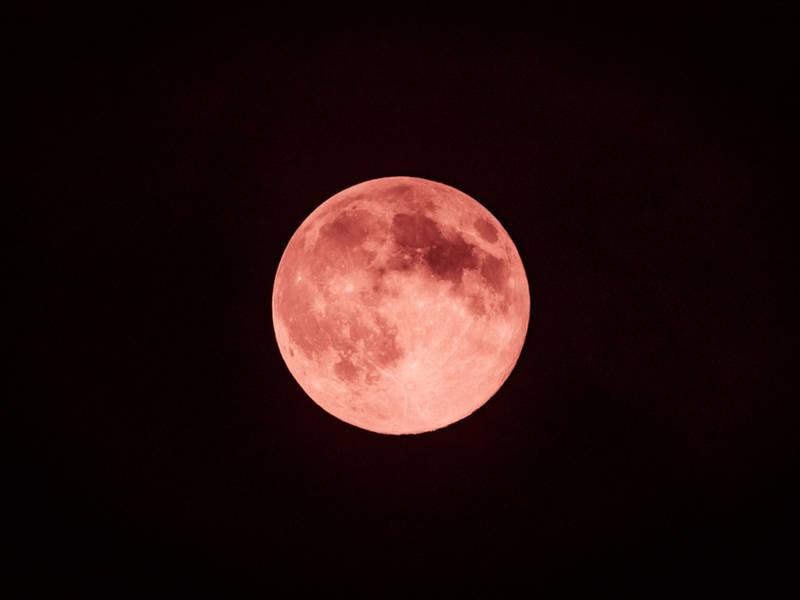 strawberry moon - photo #10