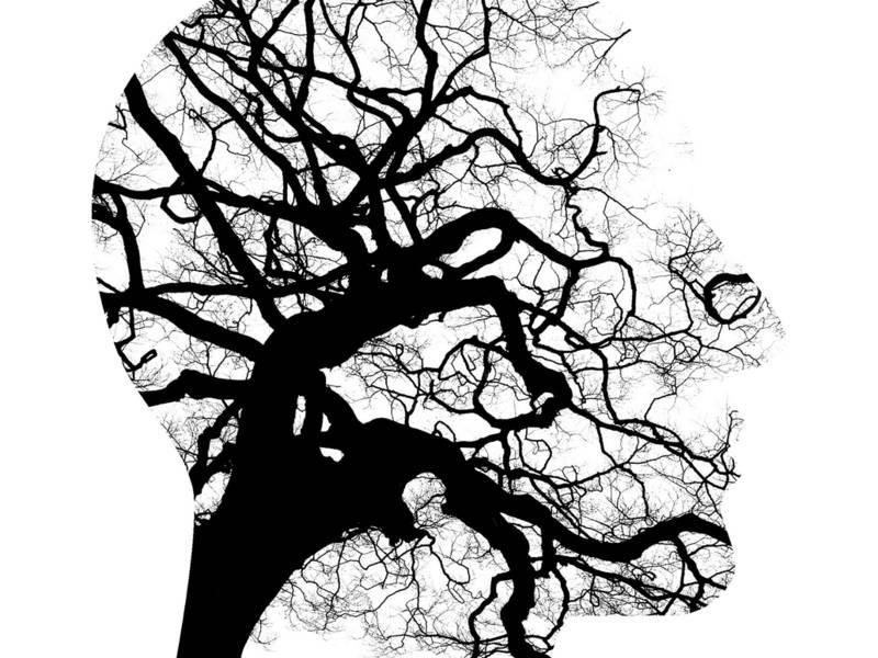 Mental Disorder And Addiction Treatment Temecula California