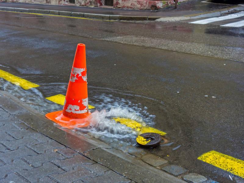 Framingham Sets Plan To Stop Beaver Flooding