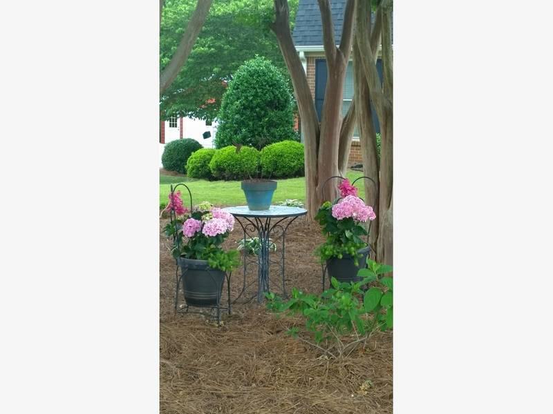 Hydrangea Festival Embellishment Contest | Douglasville, GA Patch