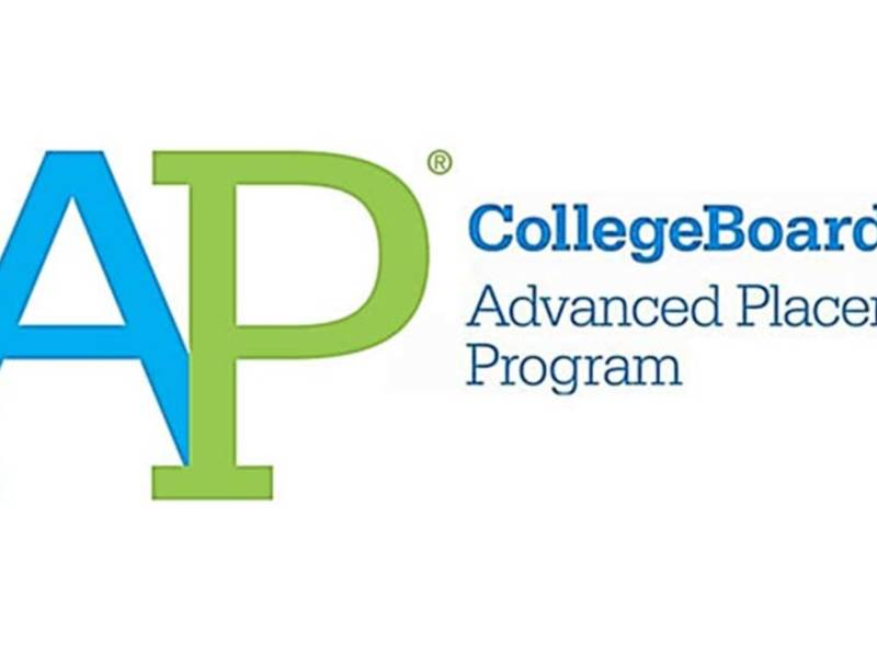 essay for advanced placement classes The advanced placement program  and then proceed to advanced courses, with appropriate credit, at any participating college in english, the task of describing the representative introductory course or courses and of assessing students' achievements in comparable high school courses.