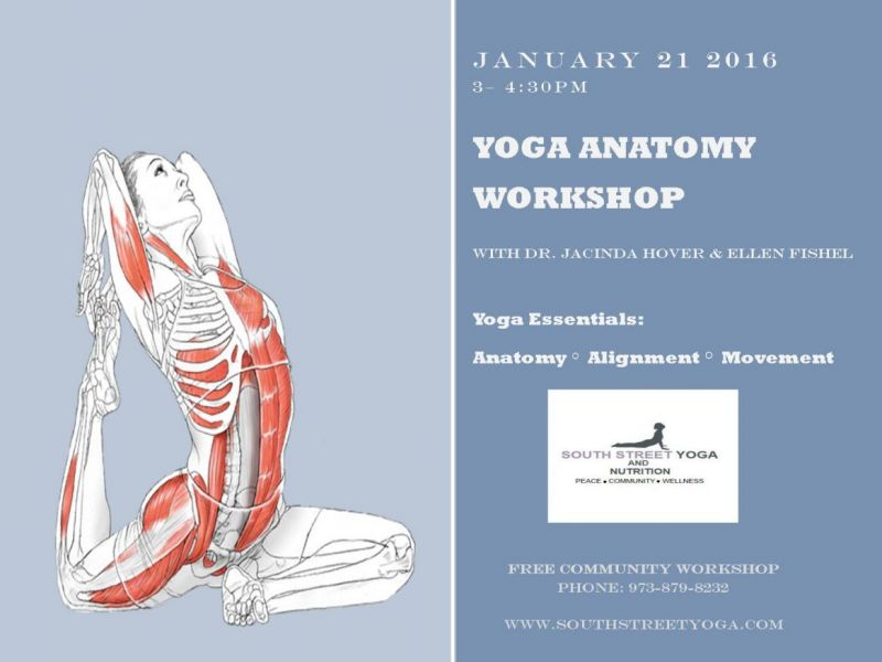 Yoga Anatomy Workshop January 21 At South Street Yoga In Morristown