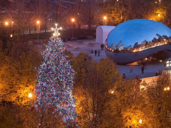 Chicago Bears Christmas Tree
