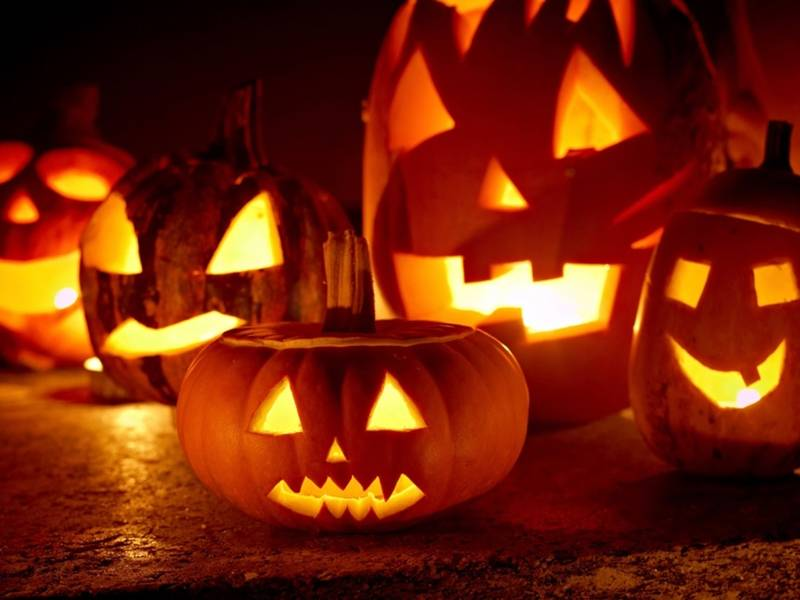 Halloween Trick-Or-Treating: When To Go In Homewood, Flossmoor ...