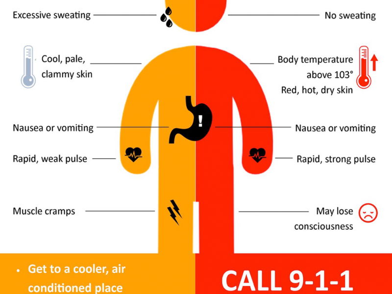 heat exhaustion vs heat stroke Heat stroke vs heat exhaustion: know the signs and symptoms the dog days of summer are here with the weekly average temperature ranging from 99-102 and having a heat index up to 118 across many parts of the country.