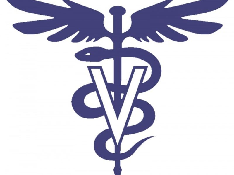 Mvccs Introductory Veterinarian Assistant Course Starts This Fall
