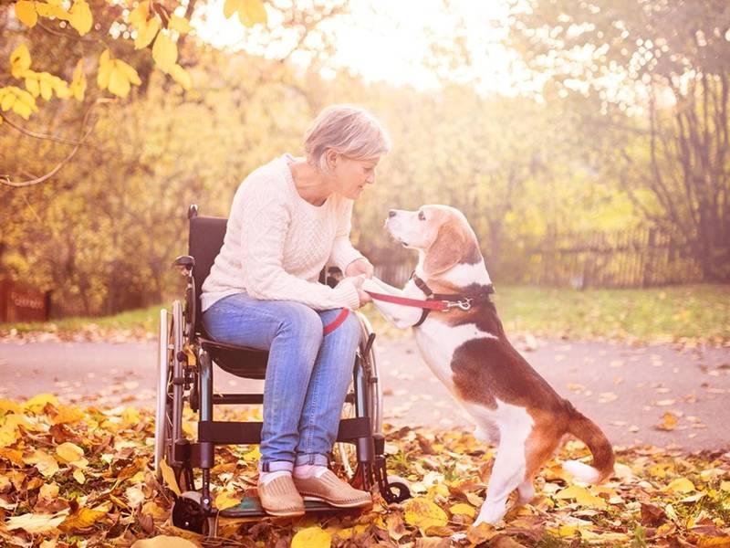 Understanding Social Security Disability Benefits