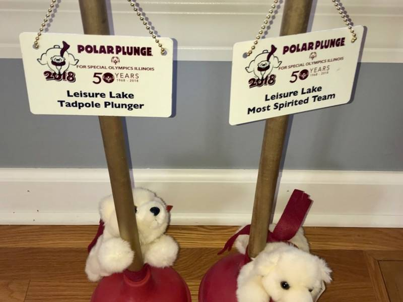 shepard wins most spirited team at polar plunge oak lawn il patch