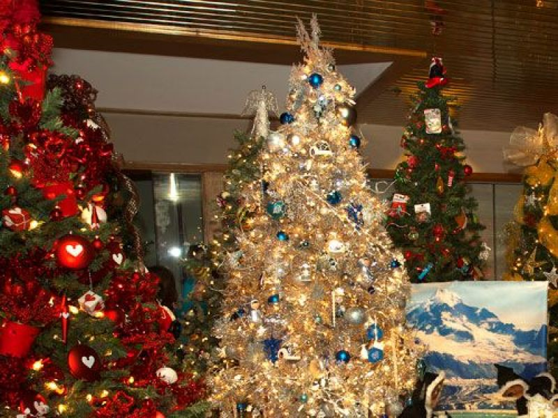 Annual Methuen Festival of Trees Starts Nov. 18 | Windham, NH Patch