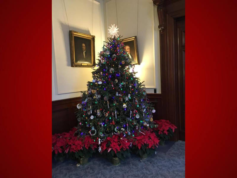 NH Farm Donates Christmas Trees For State Holiday