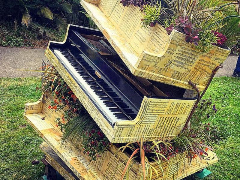 Music Blooms At San Francisco Botanical Garden