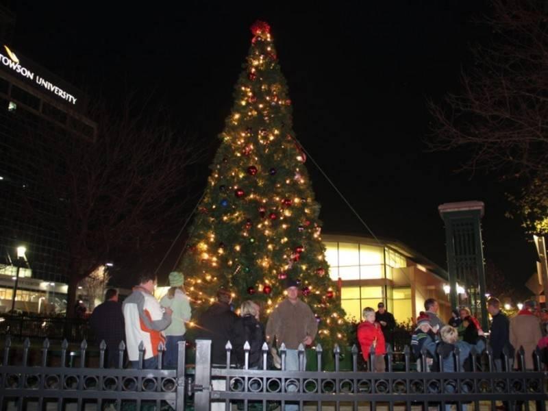 Lighting Of Christmas Tree 2017