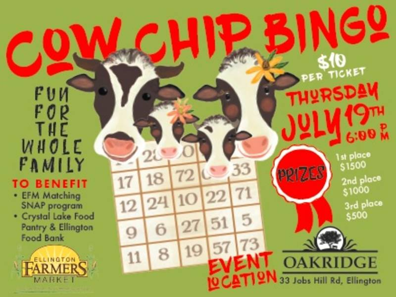 how to play cow chip bingo