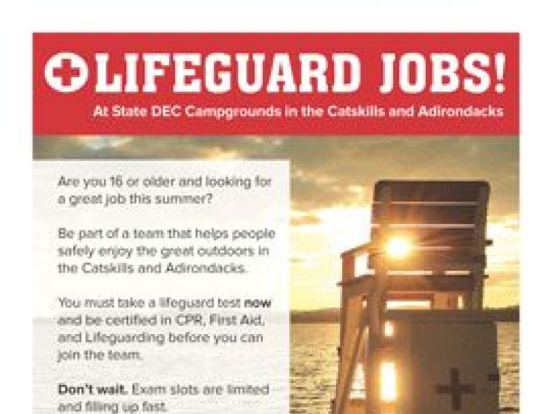 summer job opp: lifeguards in ny state parks   mid hudson valley, ny