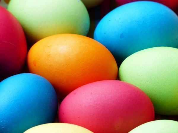 Davenport dealership hosts community Easter egg hunt