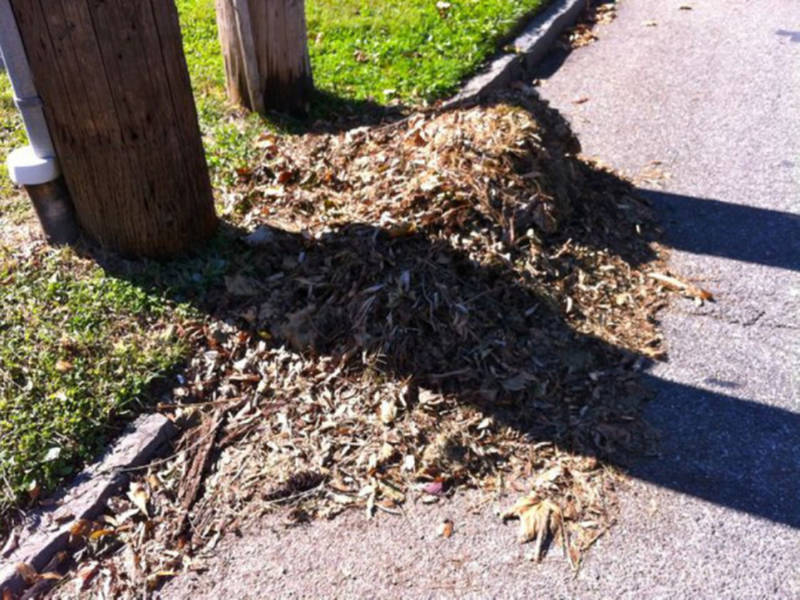 leaf collection begins in rye brook port chester ny patch