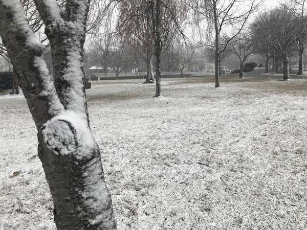 Plainview ny patch breaking news local news events schools snow likely for long island thursday negle Choice Image