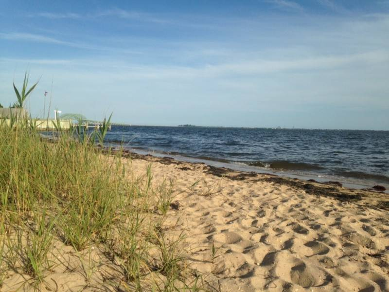 8 suffolk beaches closed to swimmers miller place ny patch - Long island swim school garden city ...