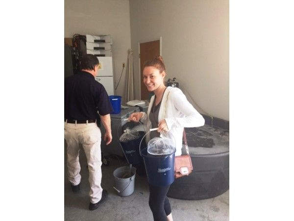 Milford city officials swat mosquito problem before it takes off
