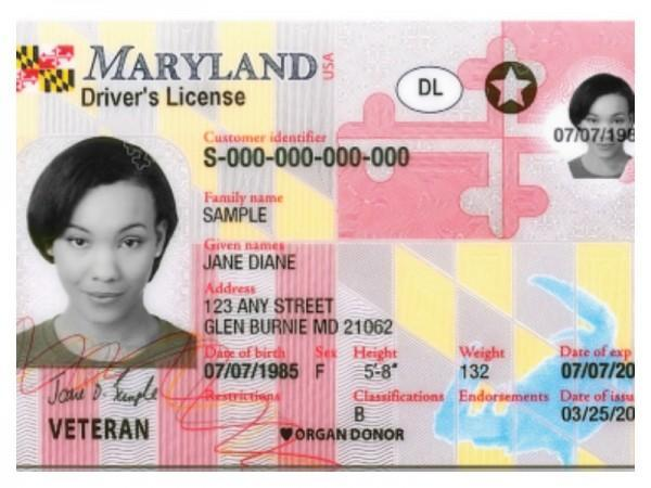 Drivers License Manual Test Maryland