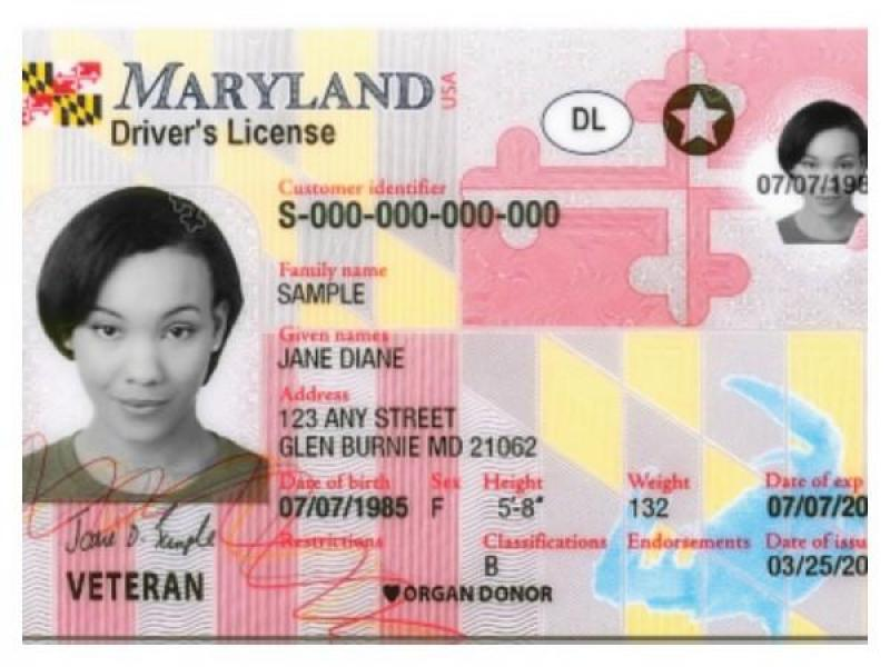 renew maryland drivers license online avoid mva lines annapolis