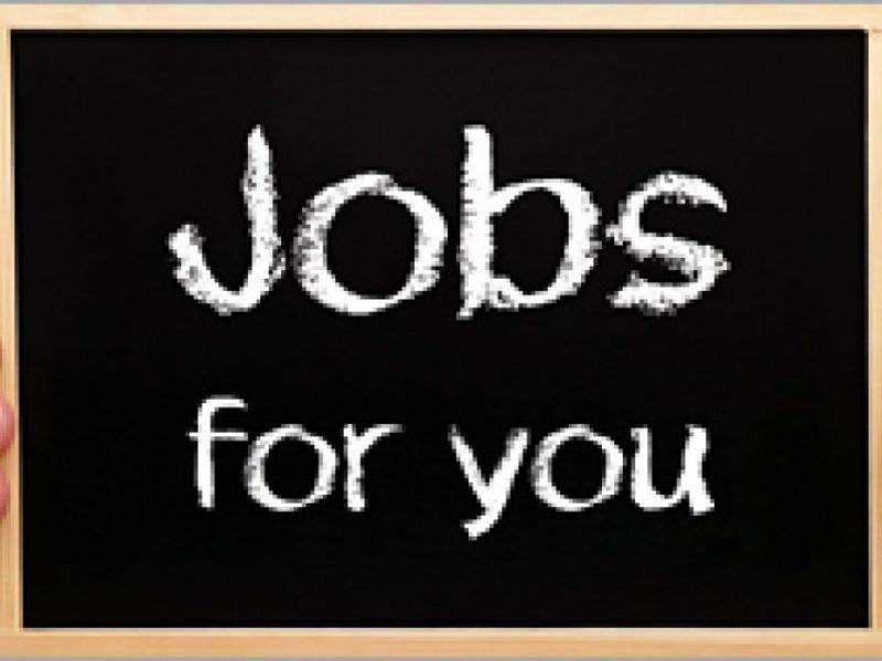 39 Jobs In Anne Arundel County Pastor Cook Front Desk